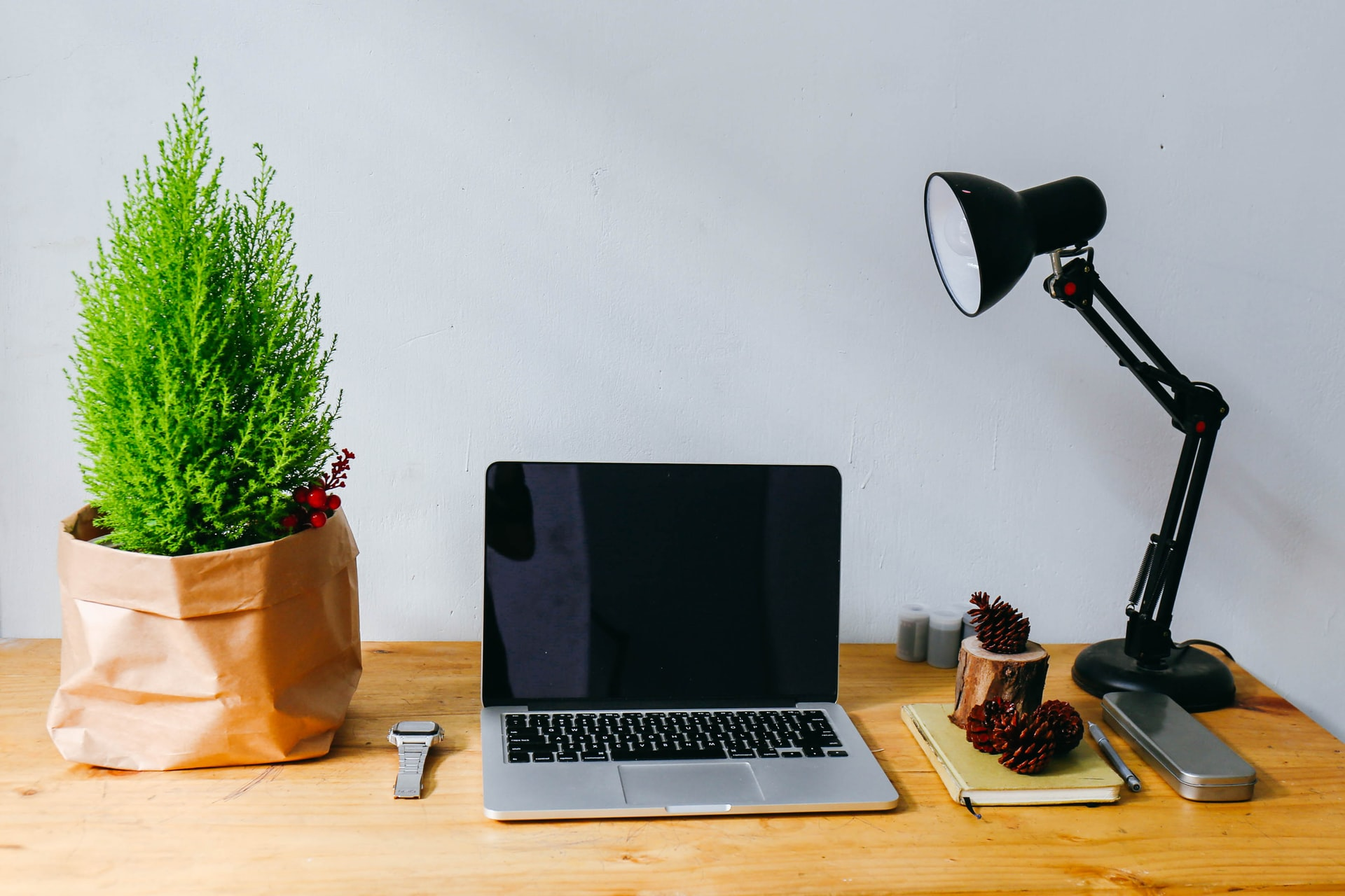 working from home desk, including plant, laptop, desk lamp and stationery