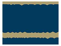 george washington logo